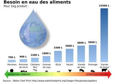 Consommation en eau des aliments