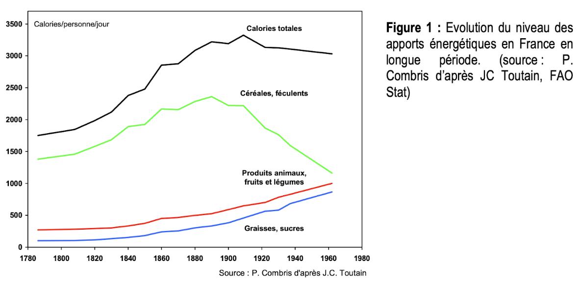 Evolution du niveau des apports énergétiques en France en longue période